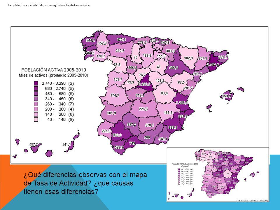 La población española. Estructura según la actividad económica. ¿Qué diferencias observas con el mapa de Tasa de Actividad? ¿qué causas tienen esas di