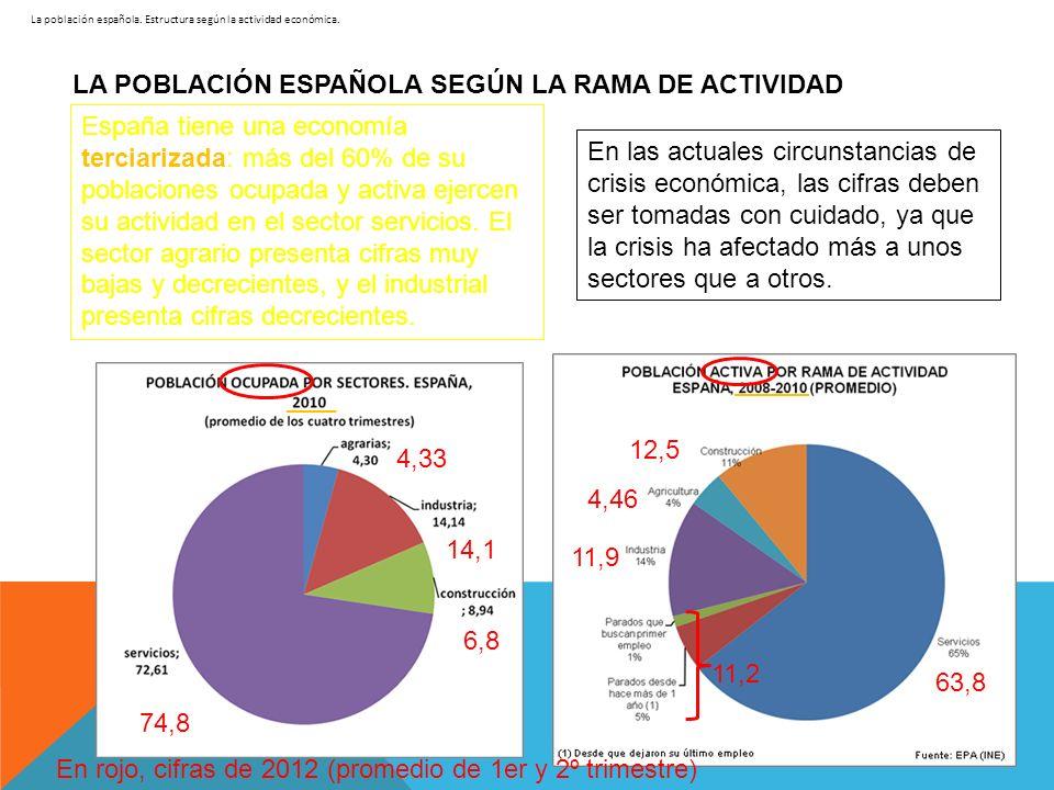 LA POBLACIÓN ESPAÑOLA SEGÚN LA RAMA DE ACTIVIDAD España tiene una economía terciarizada: más del 60% de su poblaciones ocupada y activa ejercen su act