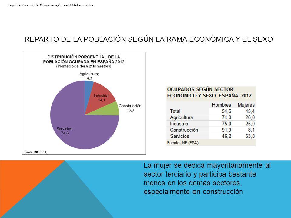 La población española. Estructura según la actividad económica. REPARTO DE LA POBLACIÓN SEGÚN LA RAMA ECONÓMICA Y EL SEXO La mujer se dedica mayoritar