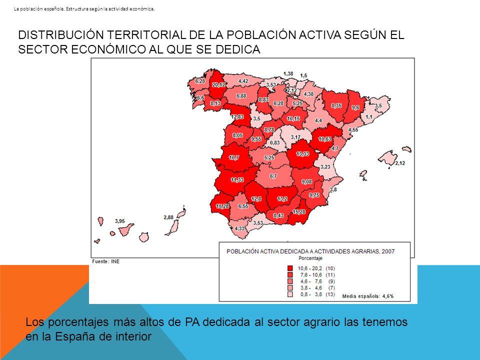 La población española. Estructura según la actividad económica. DISTRIBUCIÓN TERRITORIAL DE LA POBLACIÓN ACTIVA SEGÚN EL SECTOR ECONÓMICO AL QUE SE DE