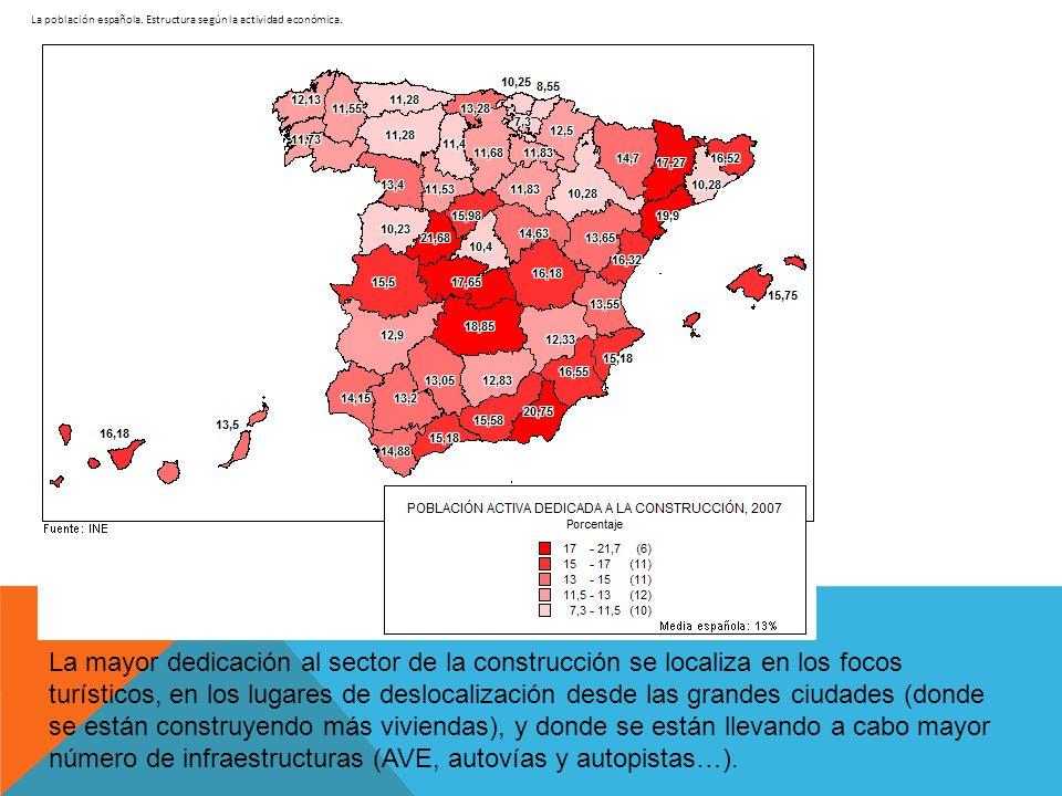La población española. Estructura según la actividad económica. La mayor dedicación al sector de la construcción se localiza en los focos turísticos,