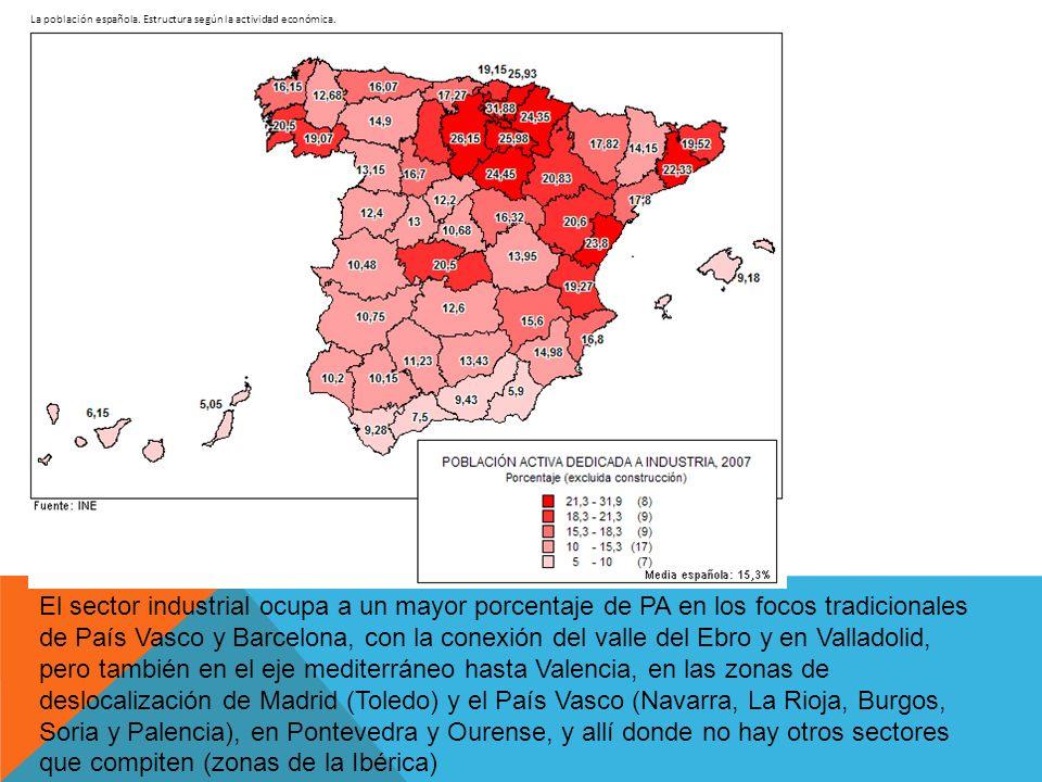 La población española. Estructura según la actividad económica. El sector industrial ocupa a un mayor porcentaje de PA en los focos tradicionales de P