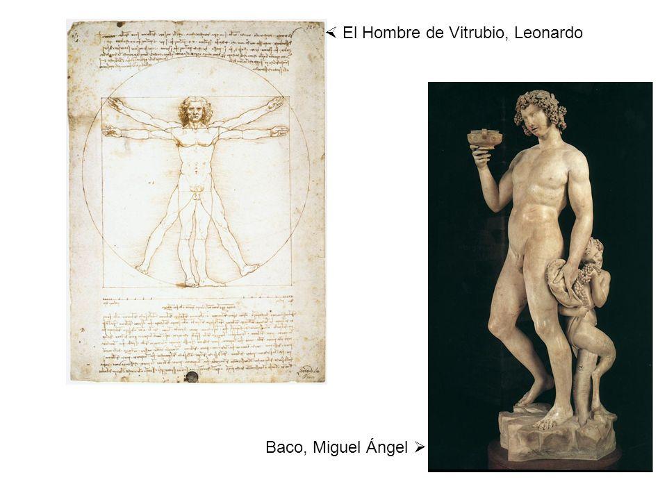 El Hombre de Vitrubio, Leonardo Baco, Miguel Ángel