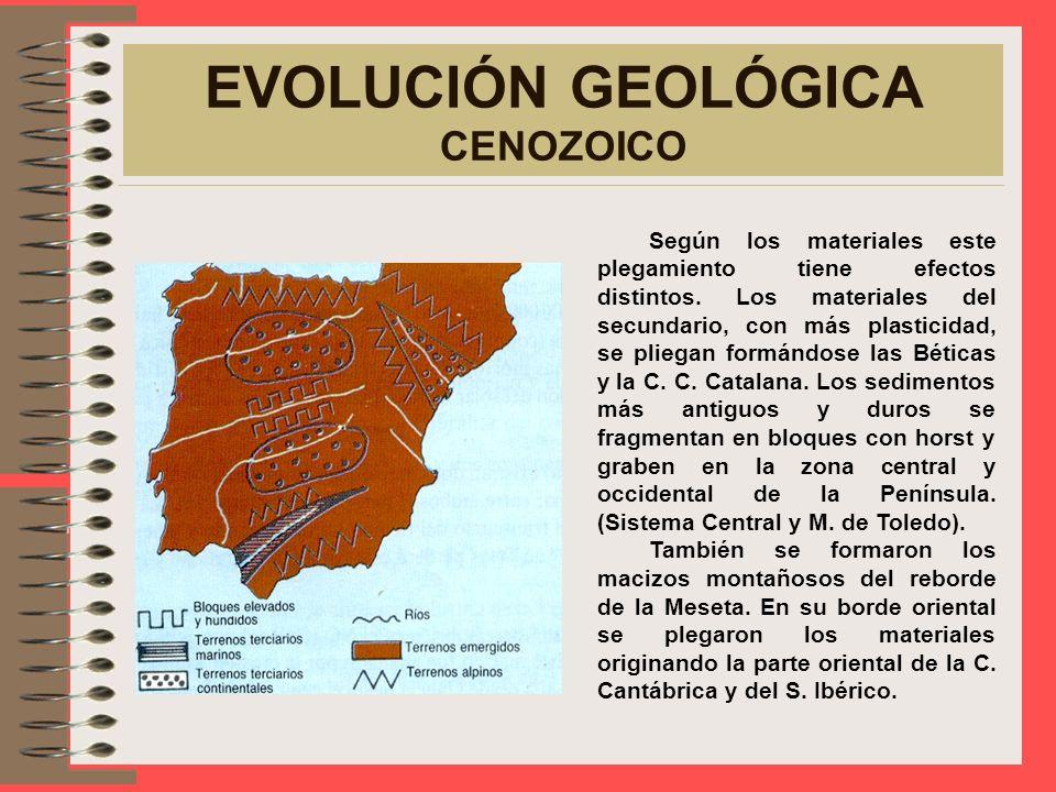 EVOLUCIÓN GEOLÓGICA CENOZOICO El plegamiento alpino provocado por el choque de la P. Ibérica y Europa, origina las cordilleras alpinas como los Pirine