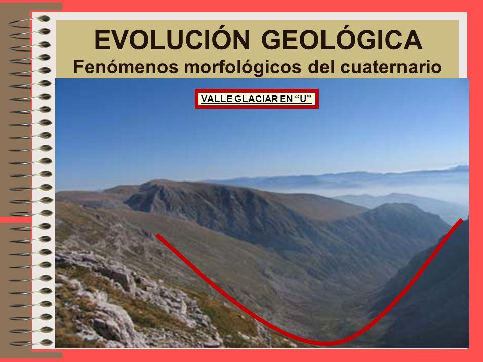 EVOLUCIÓN GEOLÓGICA Fenómenos morfológicos del cuaternario