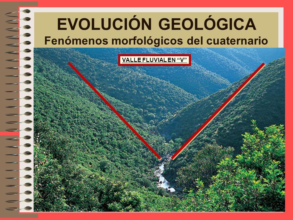 EVOLUCIÓN GEOLÓGICA Fenómenos morfológicos del cuaternario VALLE GLACIAR EN U