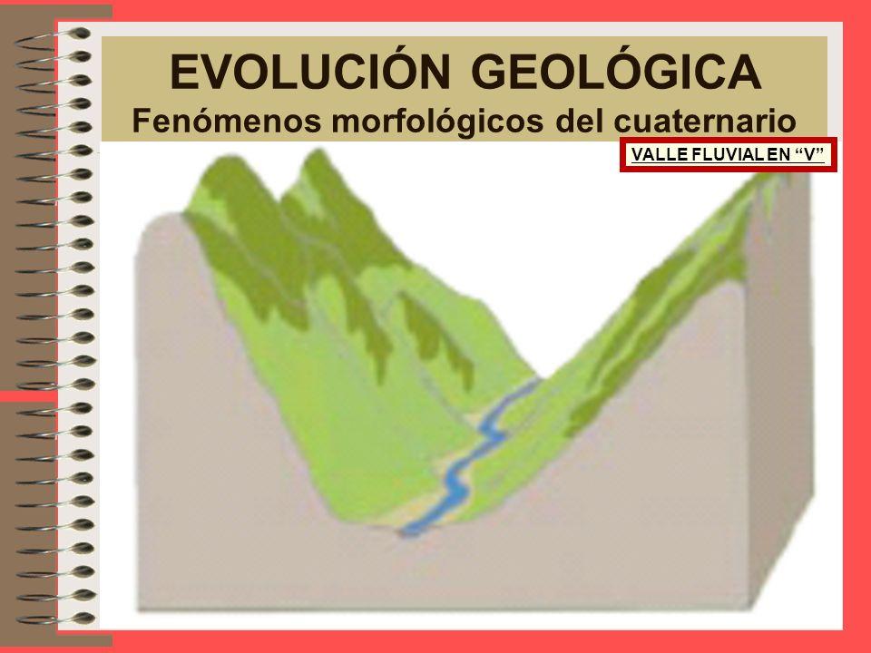 EVOLUCIÓN GEOLÓGICA Fenómenos morfológicos del cuaternario VALLE FLUVIAL EN V