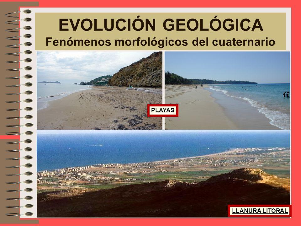EVOLUCIÓN GEOLÓGICA Fenómenos morfológicos del cuaternario TERRAZAS FLUVIALES