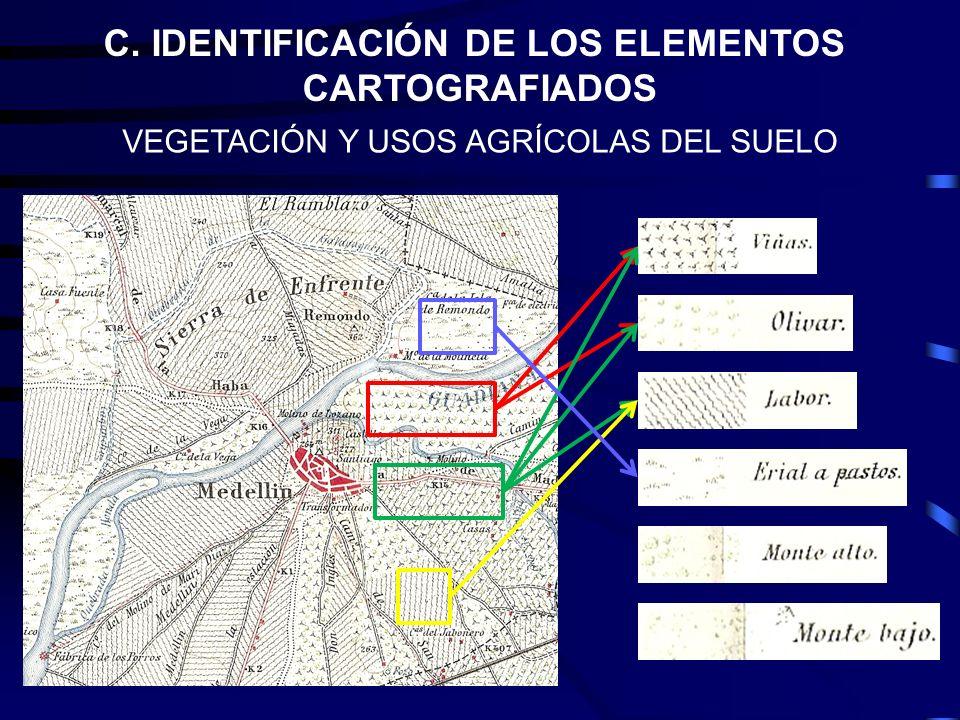 C. IDENTIFICACIÓN DE LOS ELEMENTOS CARTOGRAFIADOS VEGETACIÓN Y USOS AGRÍCOLAS DEL SUELO