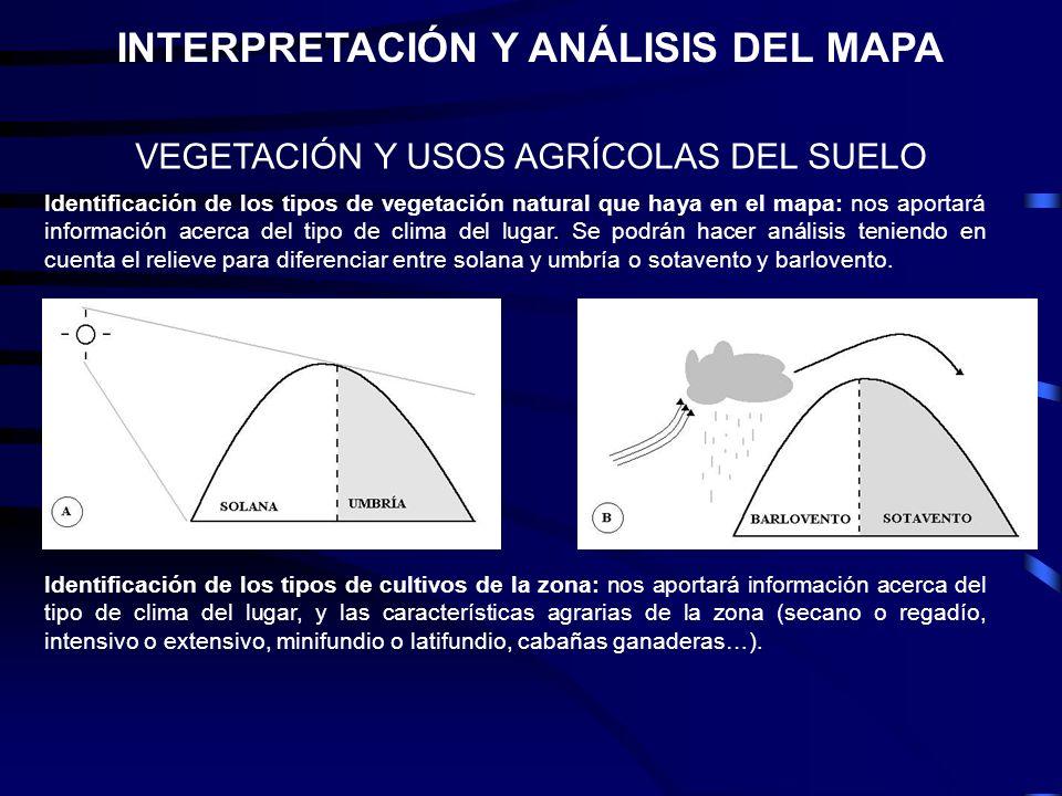 VEGETACIÓN Y USOS AGRÍCOLAS DEL SUELO Identificación de los tipos de vegetación natural que haya en el mapa: nos aportará información acerca del tipo