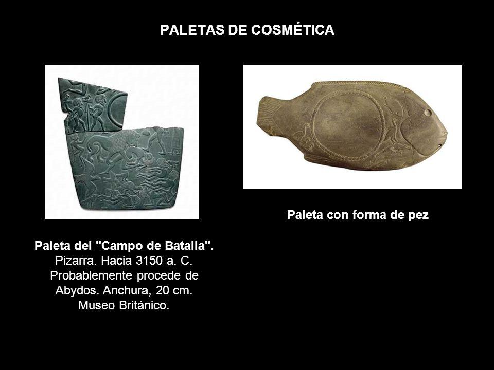 PALETAS DE COSMÉTICA Paleta del