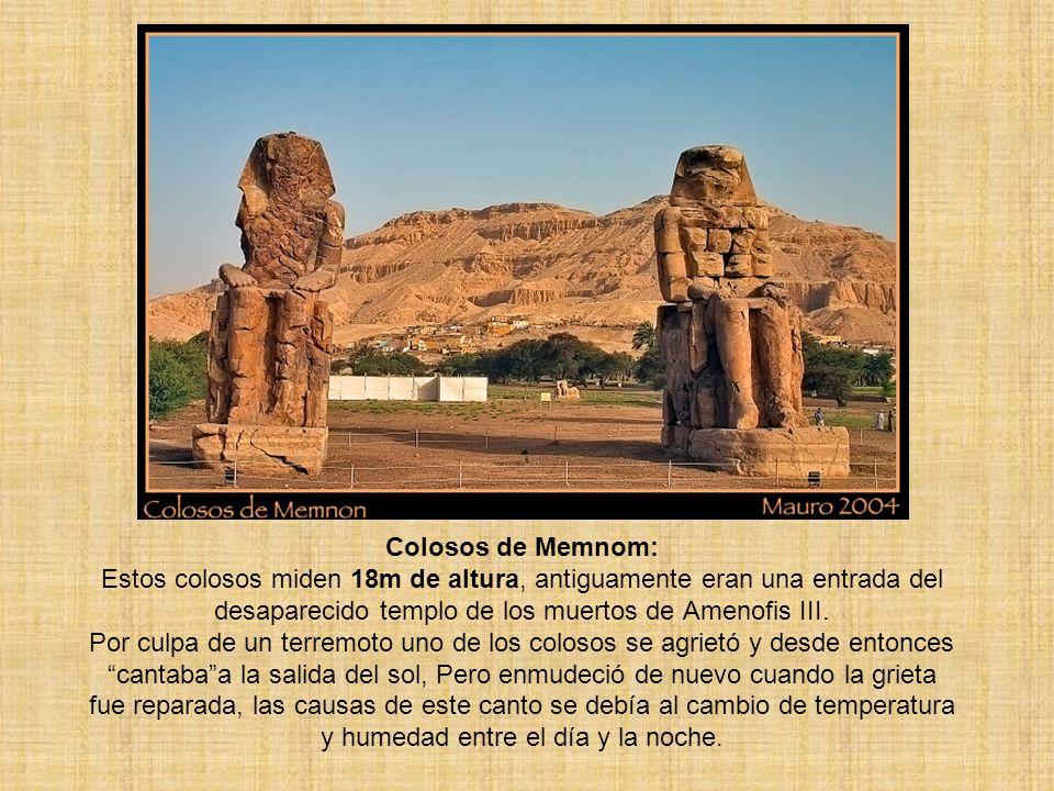 Colosos de Memnom: Estos colosos miden 18m de altura, antiguamente eran una entrada del desaparecido templo de los muertos de Amenofis III. Por culpa