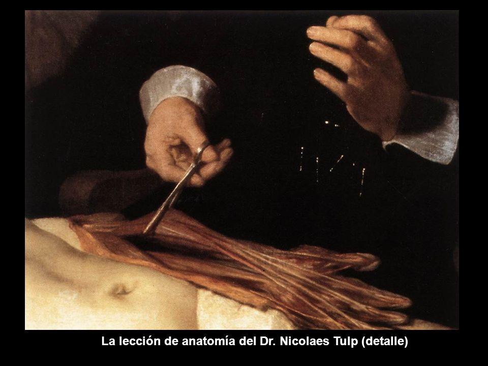 La lección de anatomía del Dr. Nicolaes Tulp (detalle)