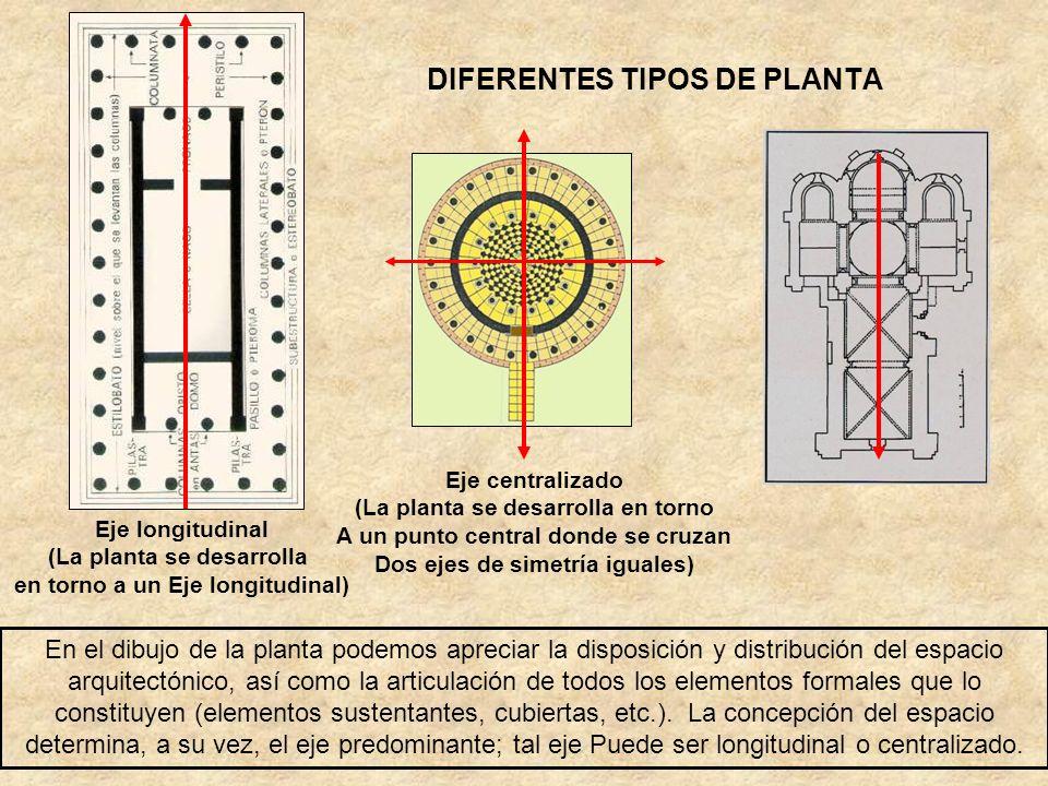 DIFERENTES TIPOS DE PLANTA En el dibujo de la planta podemos apreciar la disposición y distribución del espacio arquitectónico, así como la articulaci