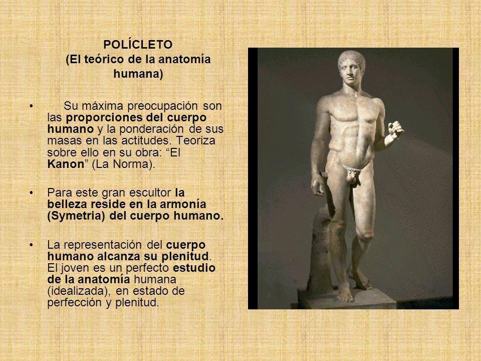 POLÍCLETO (El teórico de la anatomía humana) Su máxima preocupación son las proporciones del cuerpo humano y la ponderación de sus masas en las actitu