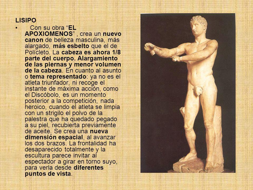 LISIPO Con su obra EL APOXIOMENOS, crea un nuevo canon de belleza masculina, más alargado, más esbelto que el de Polícleto. La cabeza es ahora 1/8 par