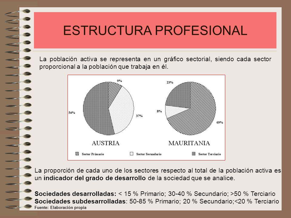 ESTRUCTURA PROFESIONAL La población activa se representa en un gráfico sectorial, siendo cada sector proporcional a la población que trabaja en él. La