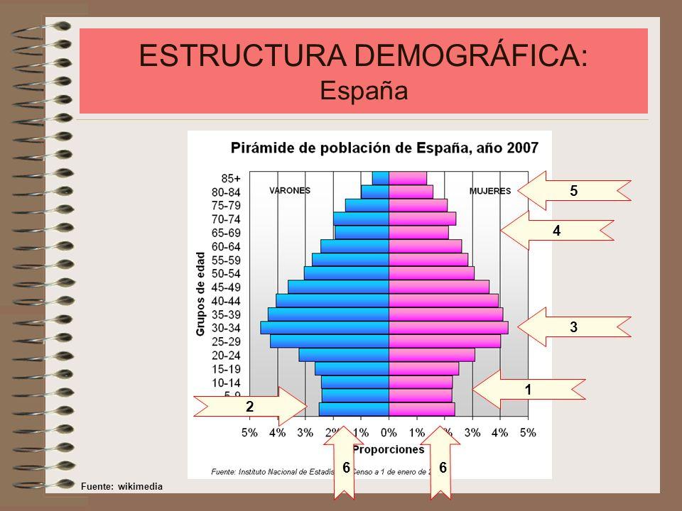 ESTRUCTURA DEMOGRÁFICA: España El análisis de la pirámide de población española presenta las siguientes características: - Fuerte estrangulamiento en la base, motivado por el descenso de la natalidad y de la fecundidad a partir de mitad de los años 70.
