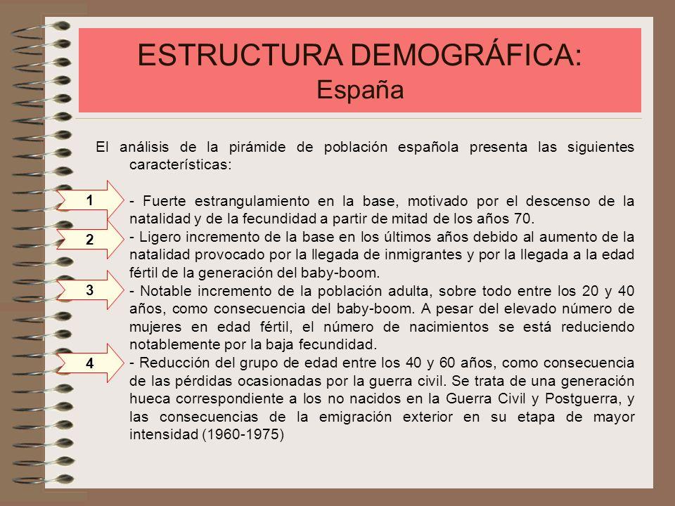 ESTRUCTURA DEMOGRÁFICA: España - La mayor mortalidad natural masculina en los grupos de edad superior y la mayor esperanza de vida femenina se aprecia claramente en la cima de la pirámide.