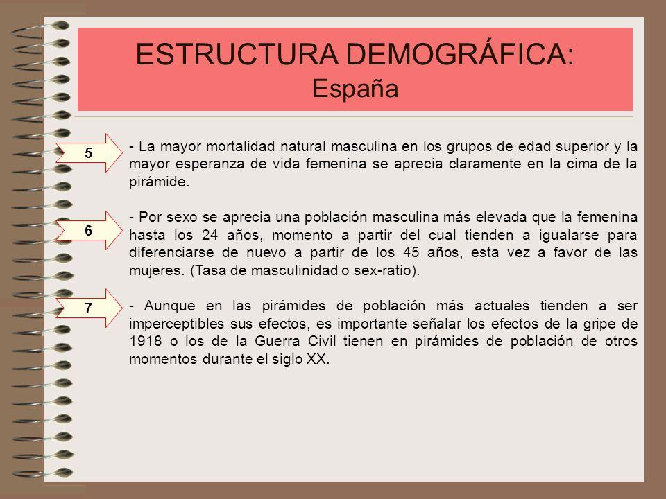 ESTRUCTURA DEMOGRÁFICA: España - La mayor mortalidad natural masculina en los grupos de edad superior y la mayor esperanza de vida femenina se aprecia