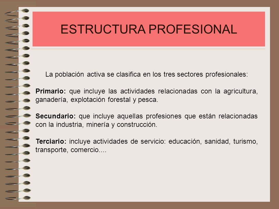 ESTRUCTURA PROFESIONAL La población activa se clasifica en los tres sectores profesionales: Primario: que incluye las actividades relacionadas con la