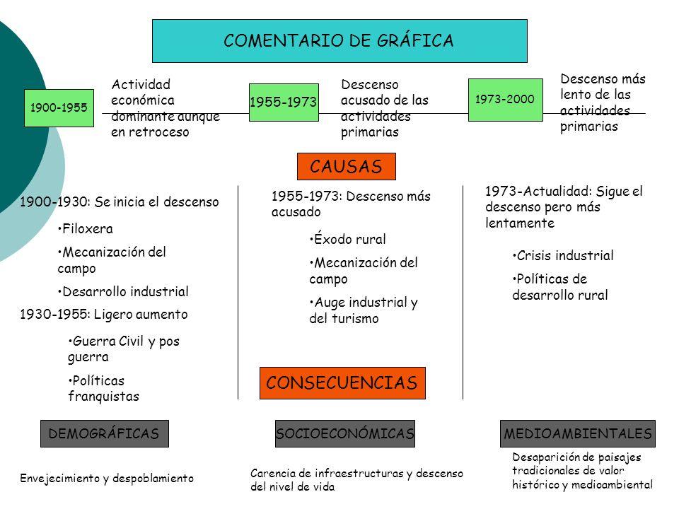 COMENTARIO DE GRÁFICA 1900-1955 1955-1973 1973-2000 Actividad económica dominante aunque en retroceso Descenso acusado de las actividades primarias De