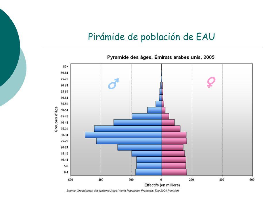 Pirámide de población de EAU