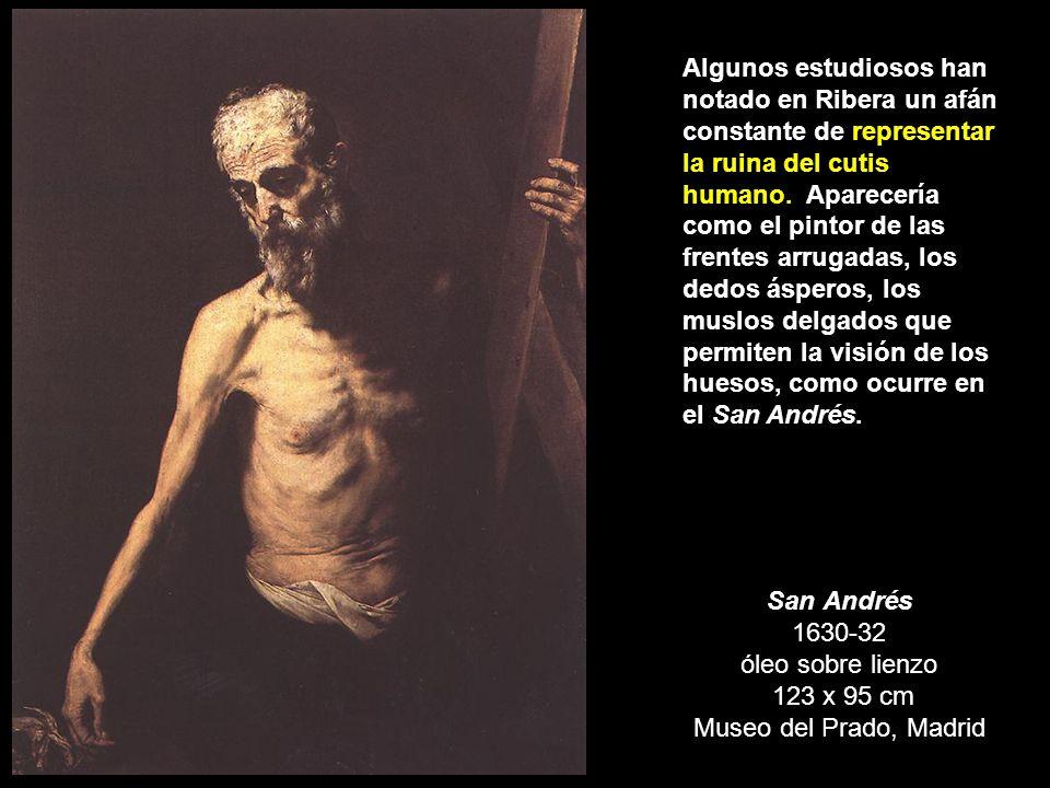 San Andrés 1630-32 óleo sobre lienzo 123 x 95 cm Museo del Prado, Madrid Algunos estudiosos han notado en Ribera un afán constante de representar la r