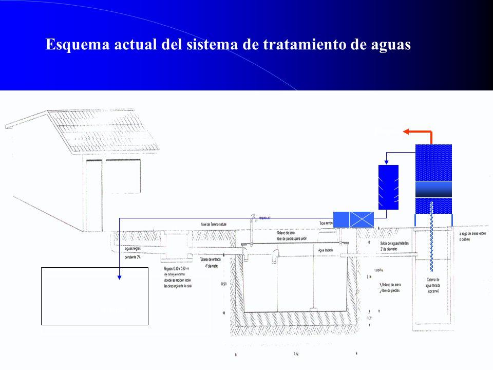 Esquema actual del sistema de tratamiento de aguas Biogas cisterna