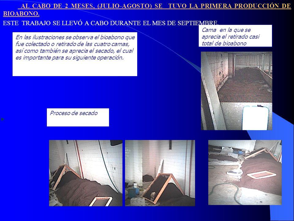 4.- CRIBADO Y ENCOSTALADO DEL BIOABONO