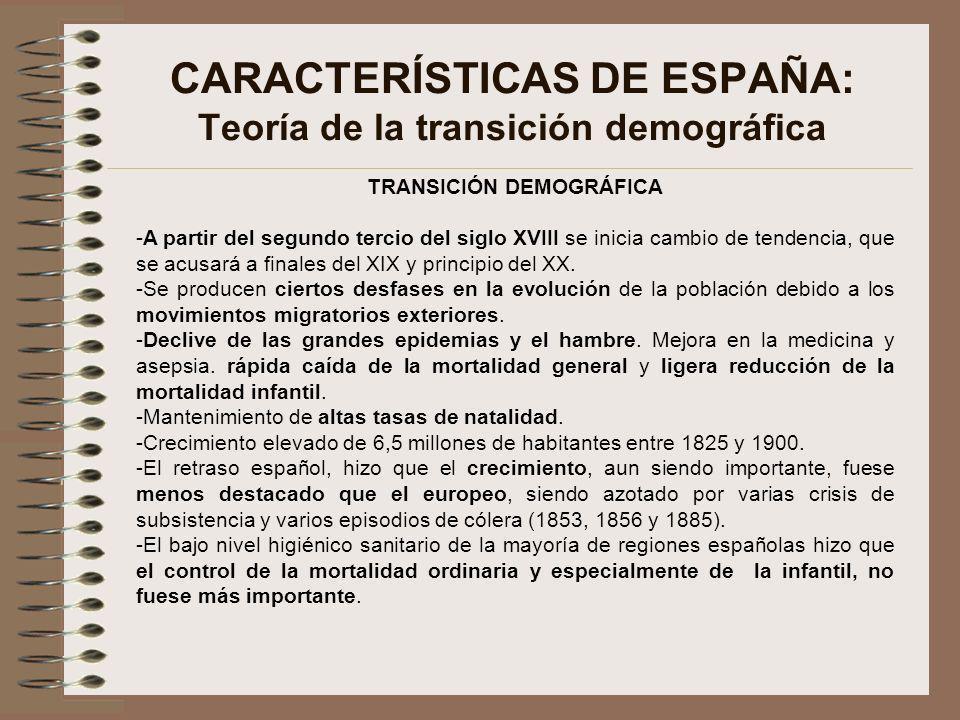 CARACTERÍSTICAS DE ESPAÑA: Teoría de la transición demográfica TRANSICIÓN DEMOGRÁFICA -A partir del segundo tercio del siglo XVIII se inicia cambio de