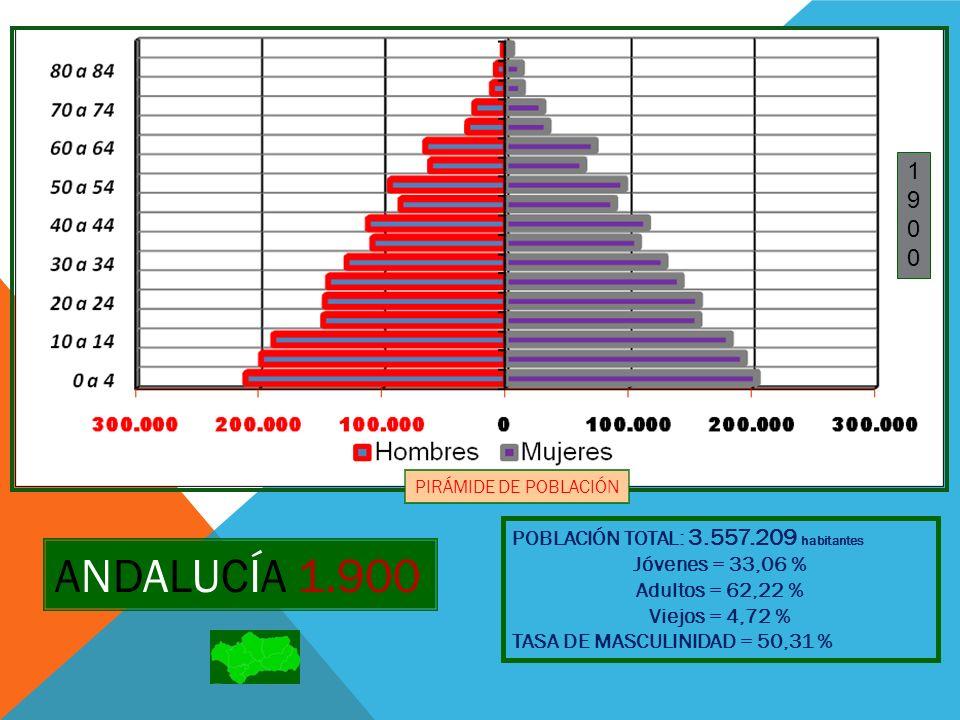 19101910 PIRÁMIDE DE POBLACIÓN POBLACIÓN TOTAL: 3.826.892 habitantes Jóvenes = 33,66 % Adultos = 61,27 % Viejos = 5,07 % TASA DE MASCULINIDAD = 49,68 % ANDALUCÍA 1.910