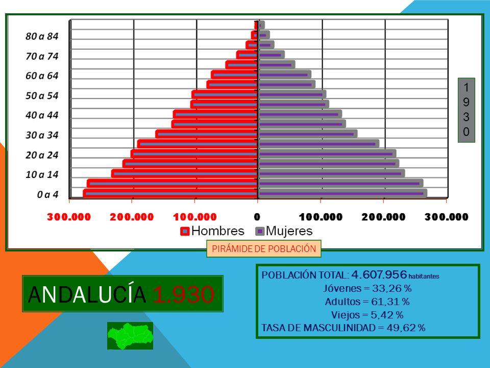 ANDALUCÍA 1.940 POBLACIÓN TOTAL: 5.219.362 habitantes Jóvenes = 33,08 % Adultos = 61,15 % Viejos = 5,77 % TASA DE MASCULINIDAD = 48,43 % 19401940 PIRÁMIDE DE POBLACIÓN