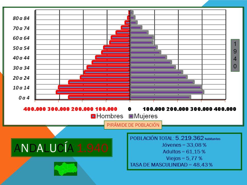 ANDALUCÍA 1.950 POBLACIÓN TOTAL: 5.604.539 habitantes Jóvenes = 29, 69 % Adultos = 64,17 % Viejos = 6,14 % TASA DE MASCULINIDAD = 48,43 % Nota : Para el censo de 1.950 no se disponen de datos por edades simples 19501950 PIRÁMIDE DE POBLACIÓN 5 a 9 15 a 24 35 a 44 55 a 64
