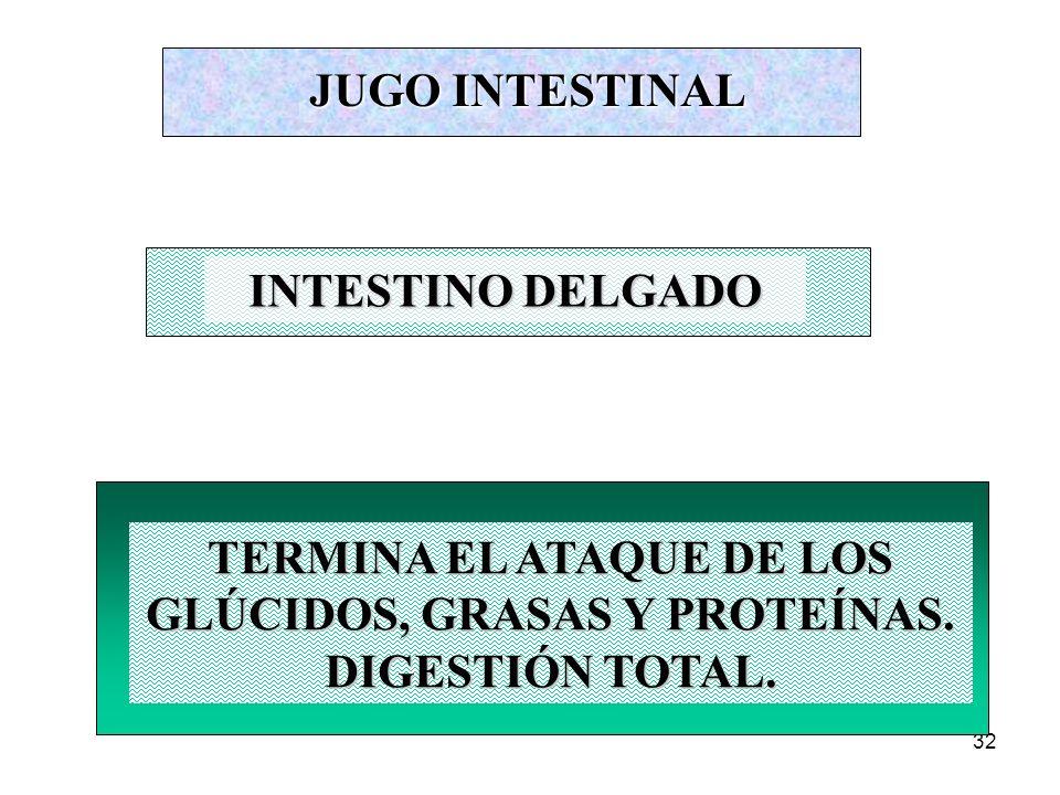 31 FUNCIONES DE LA DIGESTIÓN MASTICACIÓN INSALIVACIÓN DEGLUCIÓN DIGESTIÓN ESTOMACAL DIGESTIÓN INTESTINAL ABSORCIÓN DE SUSTANCIAS NUTRITIVAS ABSORCIÓN DE AGUA DEFECACIÓN En la digestión se realizan los siguientes actos: