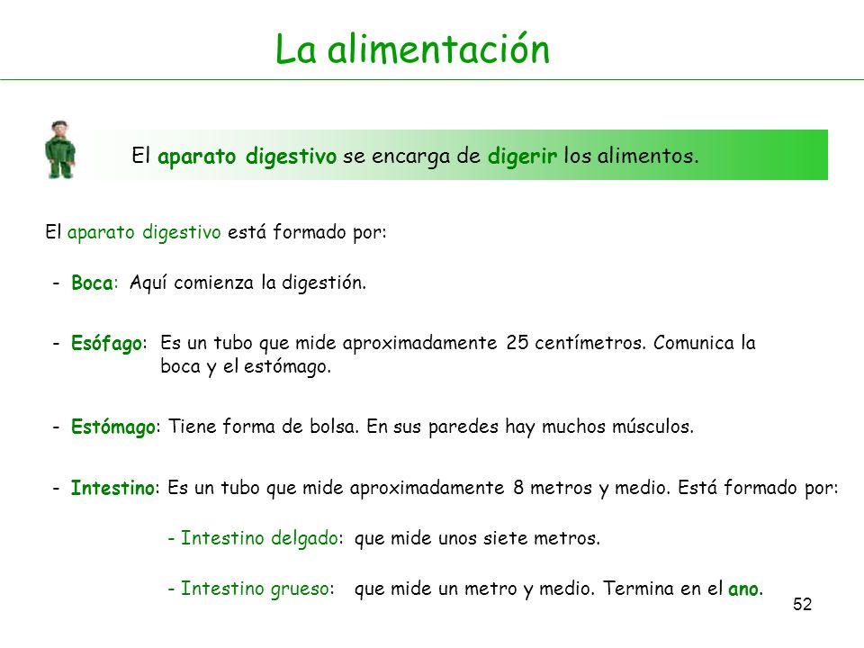 51 Boca Esófago Intestino delgado Estómago Intestino grueso Ano Aparato digestivo Aparato digestivo