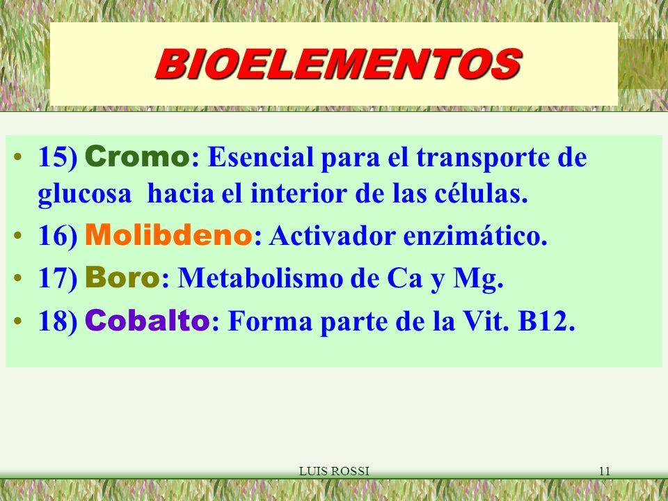 LUIS ROSSI11 BIOELEMENTOS 15) Cromo : Esencial para el transporte de glucosa hacia el interior de las células.
