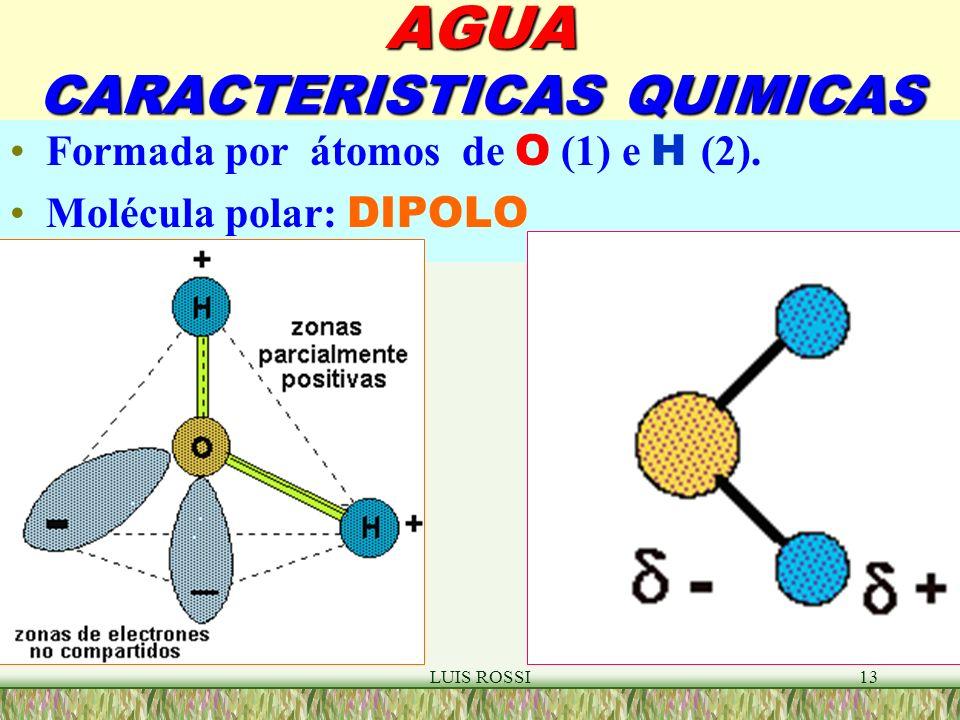 LUIS ROSSI13 AGUA CARACTERISTICAS QUIMICAS Formada por átomos de O (1) e H (2).