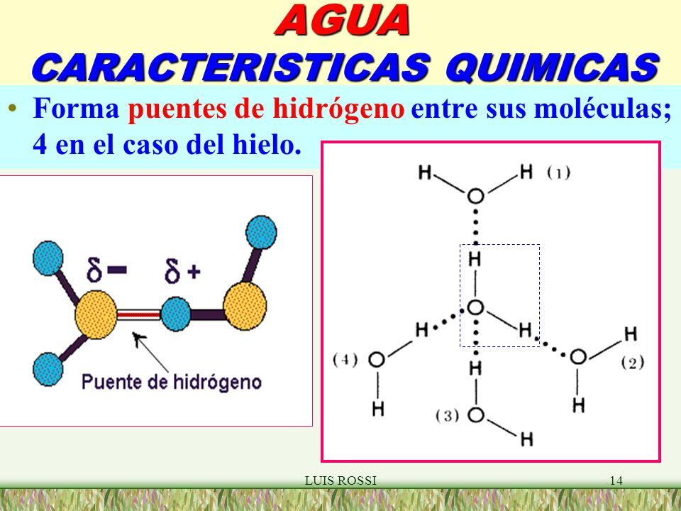 LUIS ROSSI14 AGUA CARACTERISTICAS QUIMICAS Forma puentes de hidrógeno entre sus moléculas; 4 en el caso del hielo.