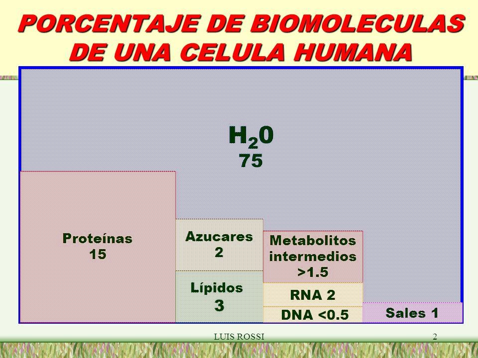 LUIS ROSSI2 PORCENTAJE DE BIOMOLECULAS DE UNA CELULA HUMANA Proteínas 15 Lípidos 3 Azucares 2 DNA <0.5 Metabolitos intermedios >1.5 RNA 2 Sales 1 H 2 0 75