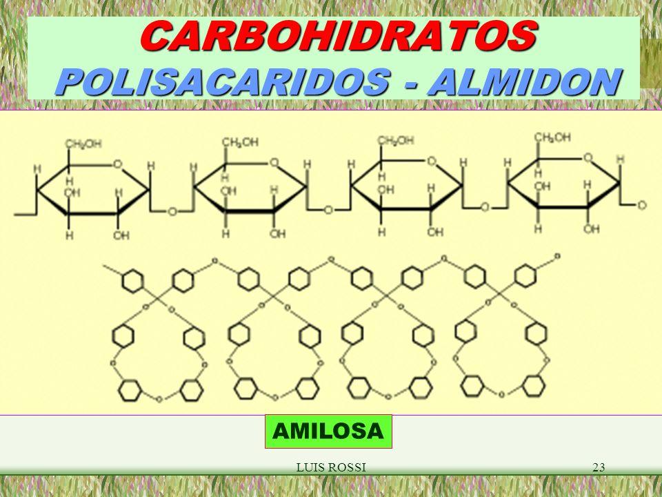 LUIS ROSSI23 CARBOHIDRATOS POLISACARIDOS - ALMIDON AMILOSA