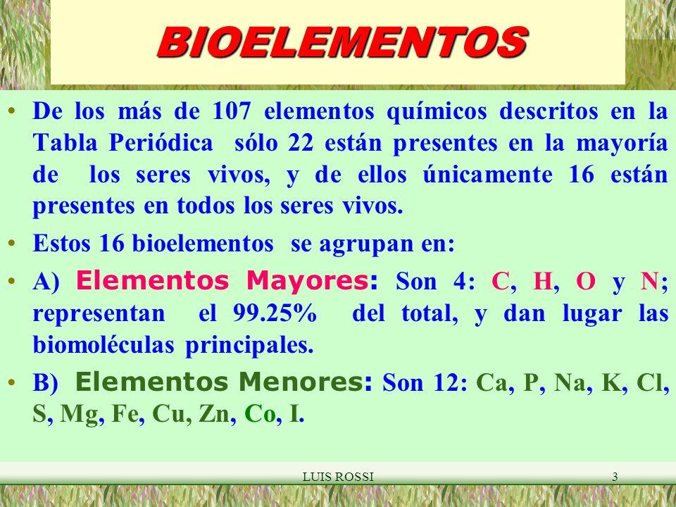 LUIS ROSSI54 PROTEINAS ENLACE PEPTIDICO H2OH2O