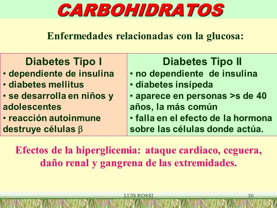 LUIS ROSSI30CARBOHIDRATOS Diabetes Tipo I dependiente de insulina diabetes mellitus se desarrolla en niños y adolescentes reacción autoinmune destruye células Diabetes Tipo II no dependiente de insulina diabetes insípeda aparece en personas >s de 40 años, la más común falla en el efecto de la hormona sobre las células donde actúa.