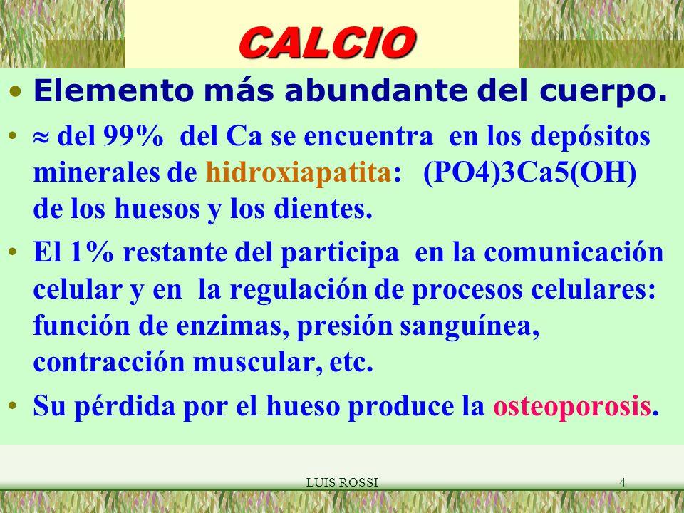 LUIS ROSSI4CALCIO Elemento más abundante del cuerpo.