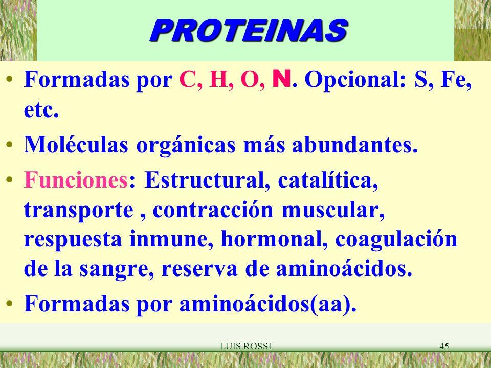 LUIS ROSSI45PROTEINAS Formadas por C, H, O, N.Opcional: S, Fe, etc.