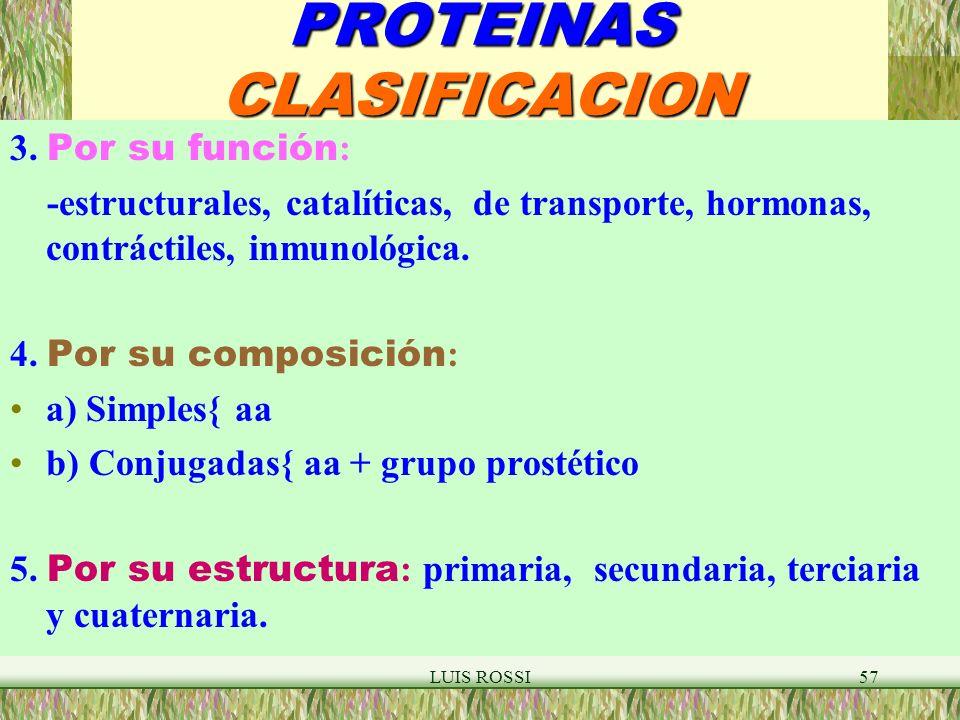 LUIS ROSSI57 PROTEINAS CLASIFICACION 3.