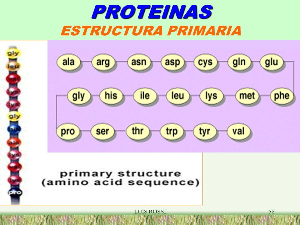 LUIS ROSSI58 PROTEINAS PROTEINAS ESTRUCTURA PRIMARIA