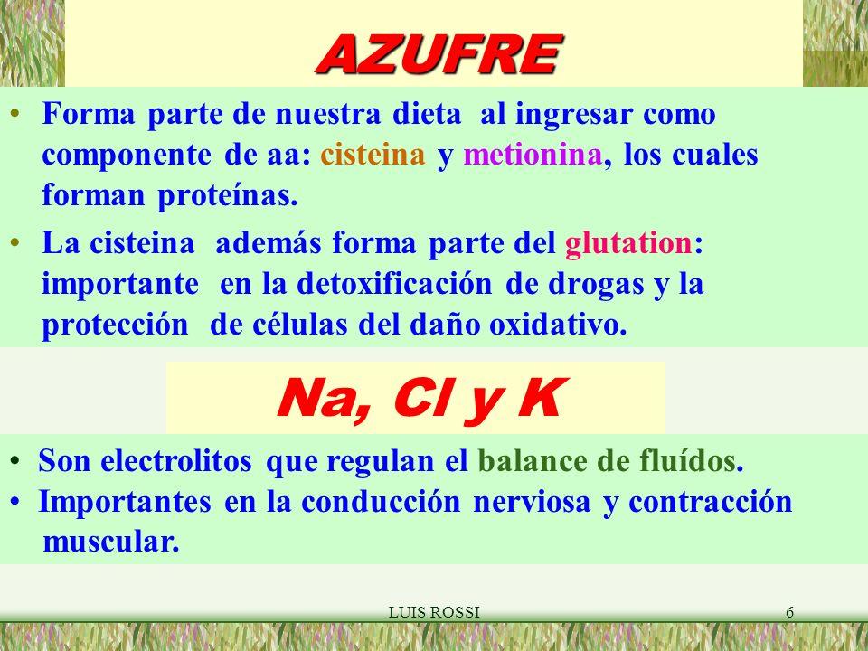 LUIS ROSSI37 FOSFOLIPIDOS FORMACION DE MONOCAPA Y MICELA O O O O O O O O O O O Monocapa Micela