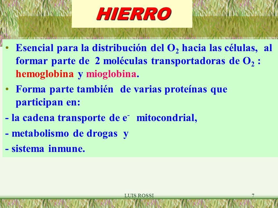 LUIS ROSSI7HIERRO Esencial para la distribución del O 2 hacia las células, al formar parte de 2 moléculas transportadoras de O 2 : hemoglobina y mioglobina.