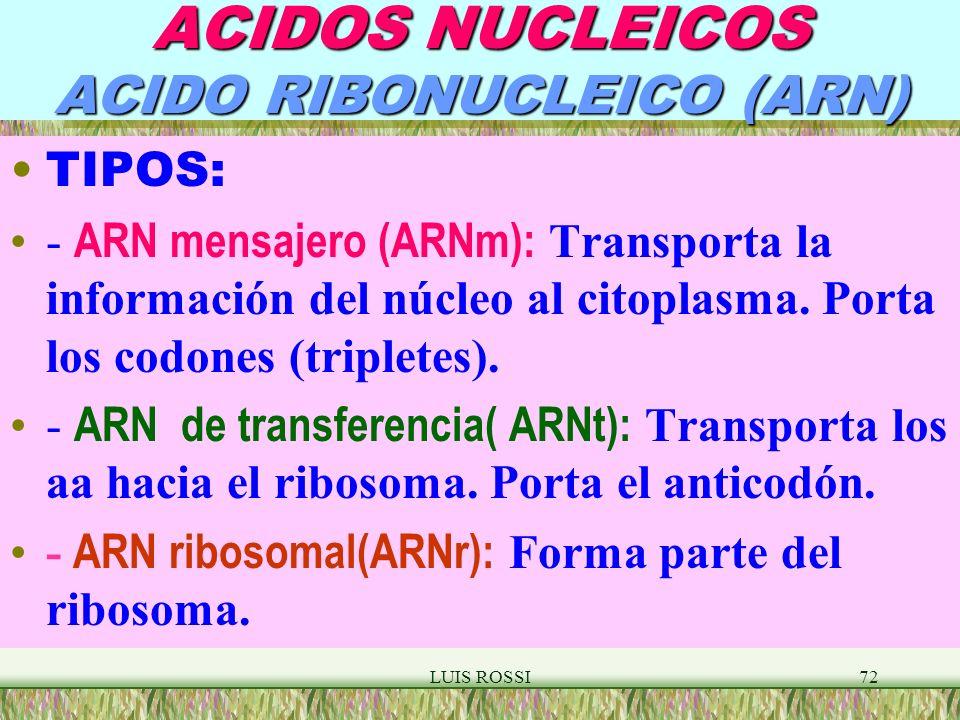 LUIS ROSSI72 ACIDOS NUCLEICOS ACIDO RIBONUCLEICO (ARN) TIPOS: - ARN mensajero (ARNm): Transporta la información del núcleo al citoplasma.